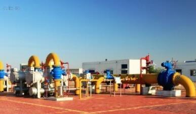 【PPP投资】互联网+PPP模式分布式天然气电站项目管理 系统规划建议书